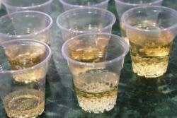 Cравнительный смотр качества безалкогольных напитков